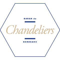 J001197_Website_TitleTiles_240x240_Chandeliers
